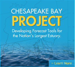 Chesapeake Bay Project